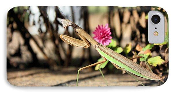 Praying Mantis IPhone Case by Kristin Elmquist