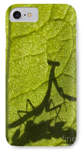 Praying Mantis Silhouette Behind A Leaf IPhone Case by Brandon Alms