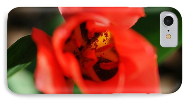 Pre-pollination  Phone Case by Neal Eslinger