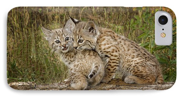 Precocious Partners IPhone Case by Elaine Haberland