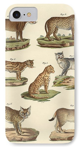 Predators From All Parts Of The World IPhone Case by Splendid Art Prints