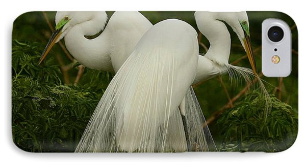 Preening Pair IPhone Case by Myrna Bradshaw