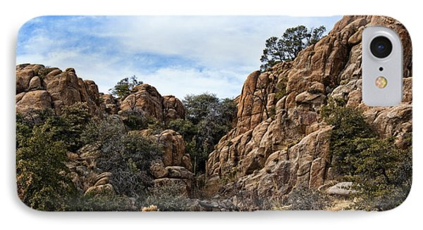 Prescott Arizona Winter Dells V IPhone Case by Lee Craig