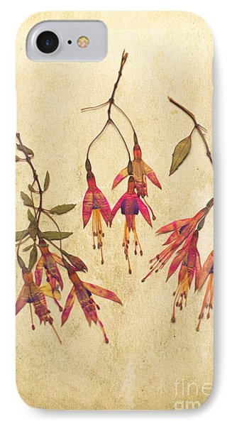 Pressed Fuchsia Flowers IPhone Case