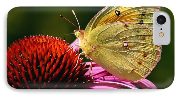 Pretty As A Butterfly IPhone Case by Roger Becker