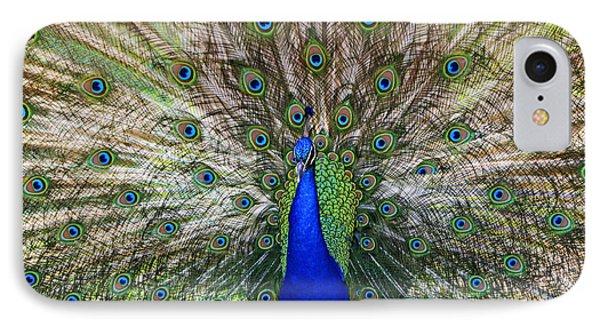Pretty As A Peacock Phone Case by Tony  Colvin