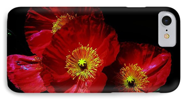 Pretty As A Poppy IPhone Case by Helen Carson