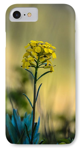 Pretty As A Wallflower IPhone Case by Ronda Broatch