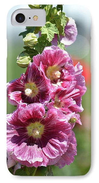 Pretty Hollyhock Flowers IPhone Case