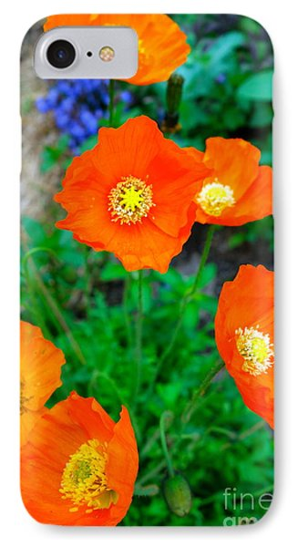 Pretty In Orange IPhone Case by Jacqueline Athmann