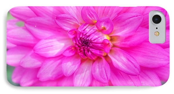 Pretty In Pink Dahlia IPhone Case by Peggy Franz