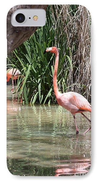 Pretty In Pink IPhone Case by John Telfer