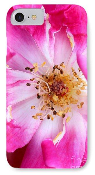 Pretty In Pink Rose Close Up Phone Case by Sabrina L Ryan