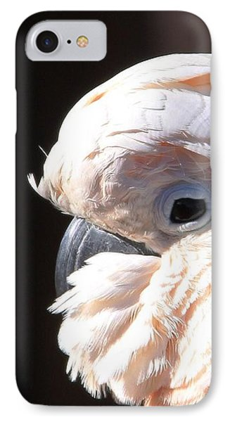 Pretty In Pink Salmon-crested Cockatoo Portrait IPhone Case by  Andrea Lazar