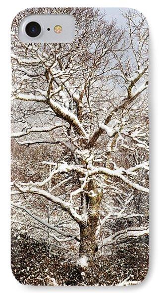 Pretty In White IPhone Case by Deborah Scannell