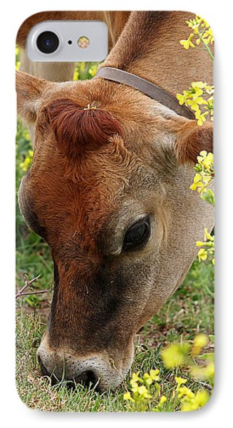 Pretty Jersey Cow Square IPhone Case