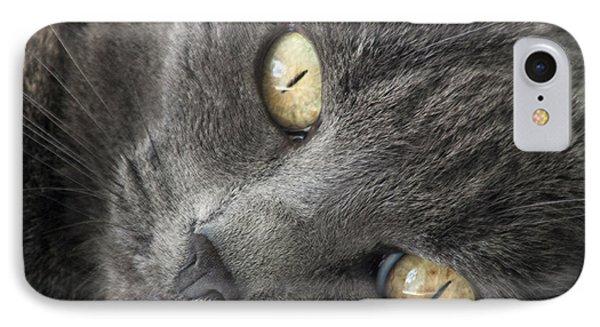 Pretty Kitty Eyes Phone Case by Darleen Stry