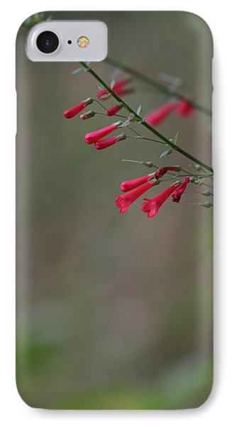 IPhone Case featuring the photograph Pretty Little Penstemon by Ruth Jolly