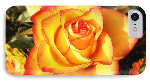 Pretty Orange Rose IPhone Case by Matthias Hauser