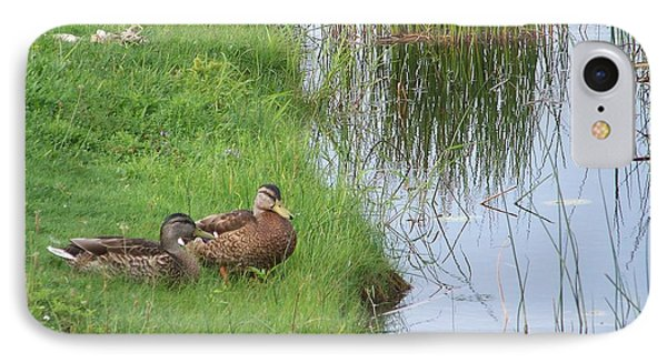 IPhone Case featuring the photograph Mated Pair Of Ducks by Eunice Miller