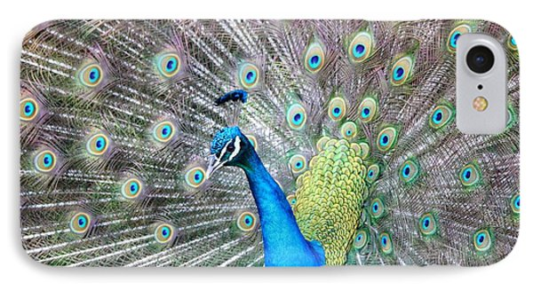IPhone Case featuring the photograph Pretty Peacock by Elizabeth Budd