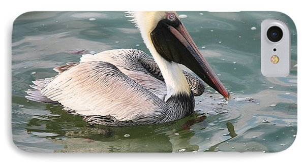 Pretty Pelican In Pond Phone Case by Carol Groenen