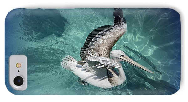 IPhone Case featuring the photograph Pretty Pelican by Pennie  McCracken