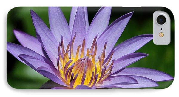 Pretty Purple Petals Phone Case by Sabrina L Ryan