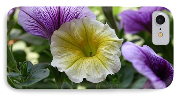 Pretty Yellow And Purple Petunias IPhone Case