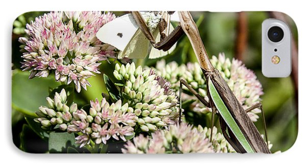 'preying' Mantis 3 IPhone Case by Lance Theroux