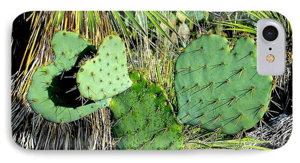 Prickley Hearts IPhone Case by Cindy Croal