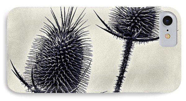 IPhone Case featuring the photograph Prickly by John Hansen