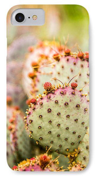 Prickly Pear 1 IPhone Case
