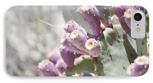 Prickly Pear Cacti IPhone Case by Andrea Hazel Ihlefeld