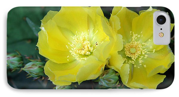 Prickly Pear Cactus Flowers No. 3 IPhone Case