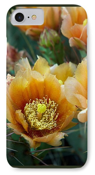 Prickly Pear Cactus IPhone Case by Mary Lee Dereske