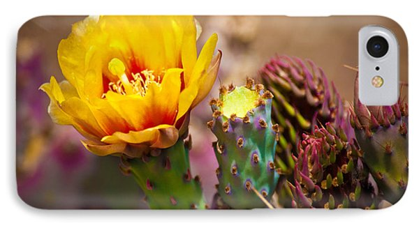 Prickly Pear Cactus Phone Case by Swift Family