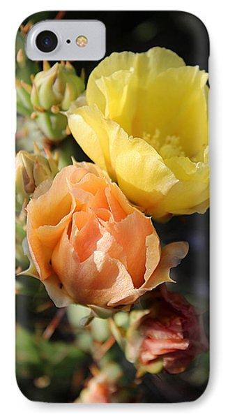 Prickly Pear No. 5 IPhone Case by Susan Schroeder