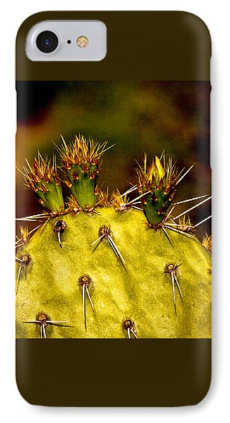 Prickly Pear Spring IPhone Case