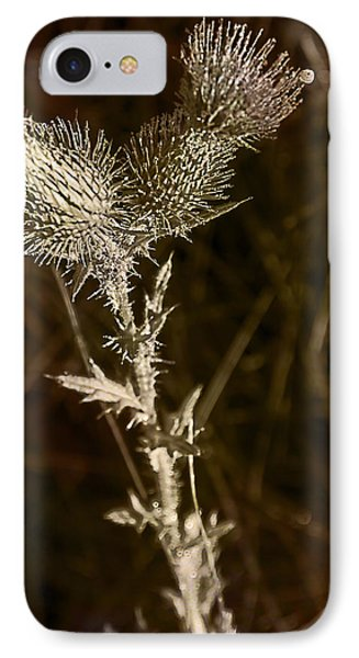 Prickly To The End Phone Case by Jo-Anne Gazo-McKim