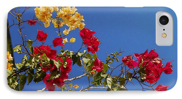 IPhone Case featuring the photograph Primary Colors by Ginny Schmidt