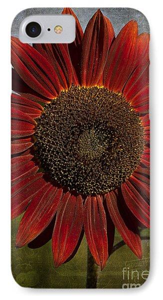 Primitive Sunflower 2 IPhone Case