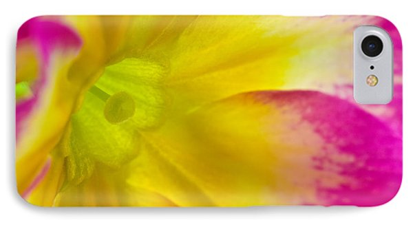Primrose Glow IPhone Case by Joan Herwig