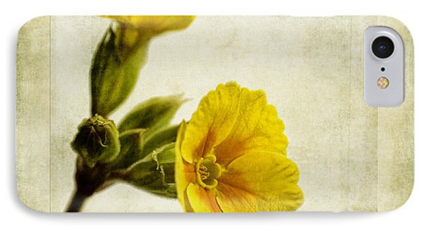 Primula Pacific Giant Yellow IPhone Case