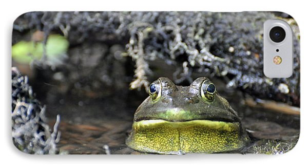 IPhone Case featuring the photograph Bullfrog by Glenn Gordon