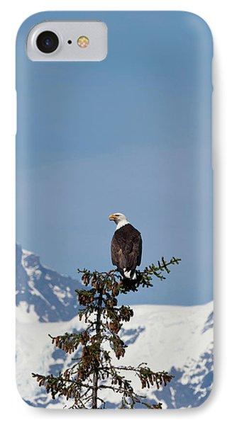 Prince William Sound, Alaska, A Bald IPhone Case