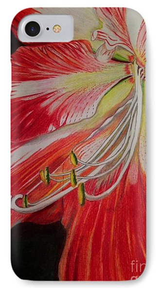 IPhone Case featuring the photograph Prismacolor Amaryllis by Brigitte Emme