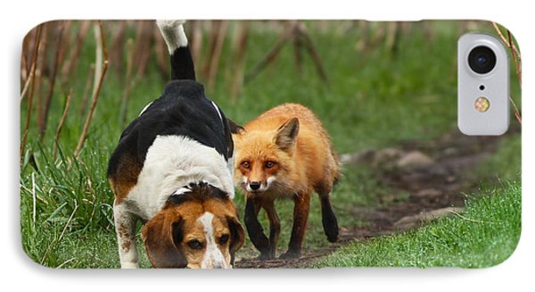 Probably The World's Worst Hunting Dog IPhone Case by Mircea Costina Photography