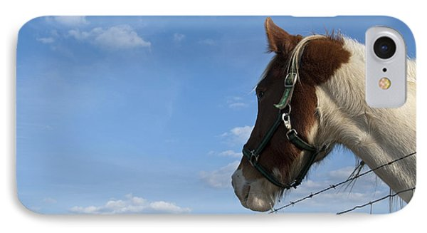 IPhone Case featuring the photograph Profile Of A Horse by Charles Beeler