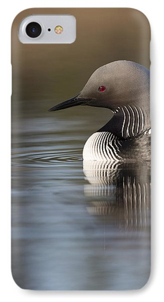 Profile Of A Pacific Loon IPhone Case by Tim Grams
